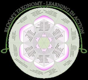 blooms-taxonomy-rose